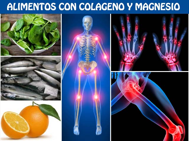 alimentos ricos en colageno y magnesio