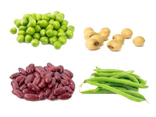 alimentos con proteinas vegetales