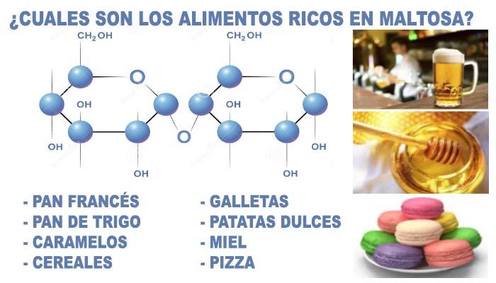 que es la sacarosa y en que alimentos se encuentra