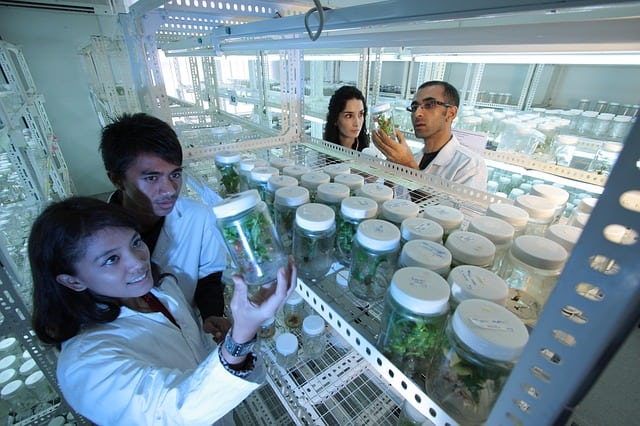 beneficios de la biotecnologia