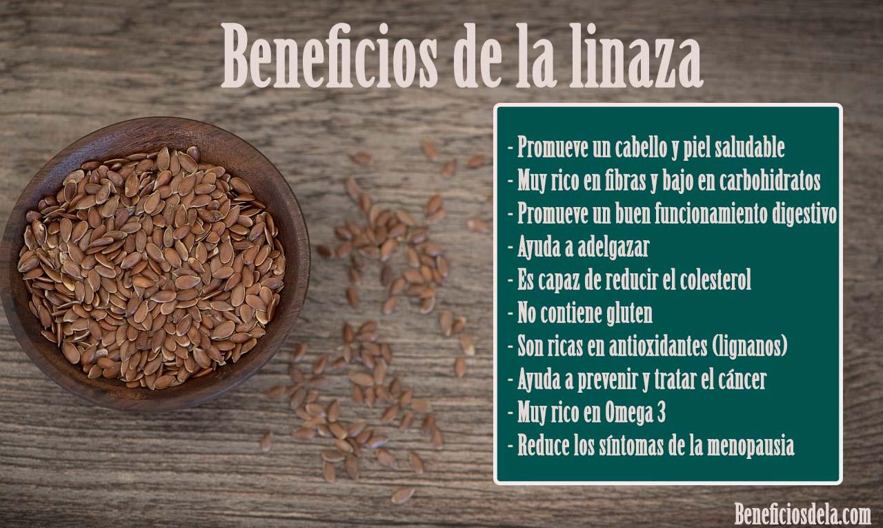 Semillas de lino beneficios para la salud