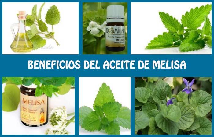 beneficios del aceite de melisa