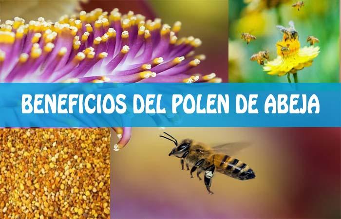beneficios del polen de abeja