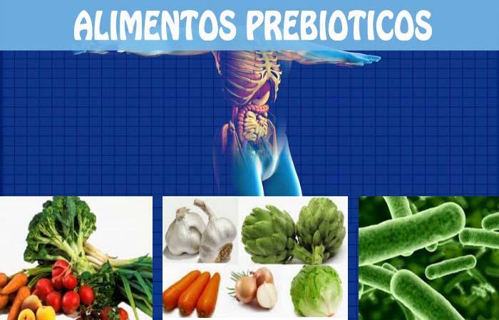 alimentos prebioticos