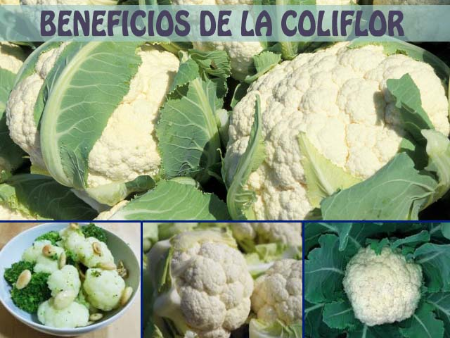 beneficios de la coliflor