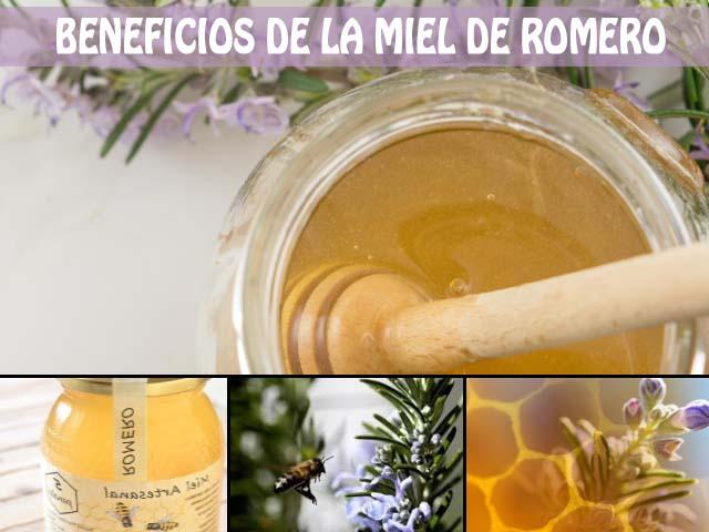 Beneficios de la miel de romero y sus propiedades para la salud