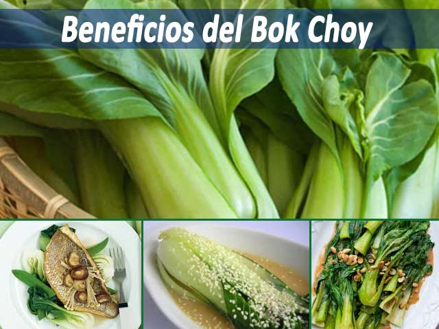 Beneficios del Bok Choy y propiedades de este vegetal muy nutritivo