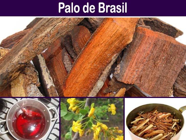 para que sirve el palo de brasil