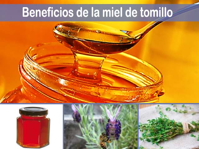beneficios de la miel de tomillo
