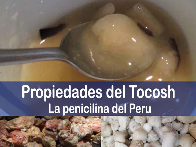 propiedades del tocosh