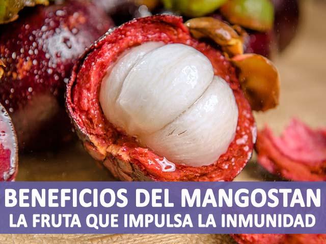 propiedades y beneficios del mangostan