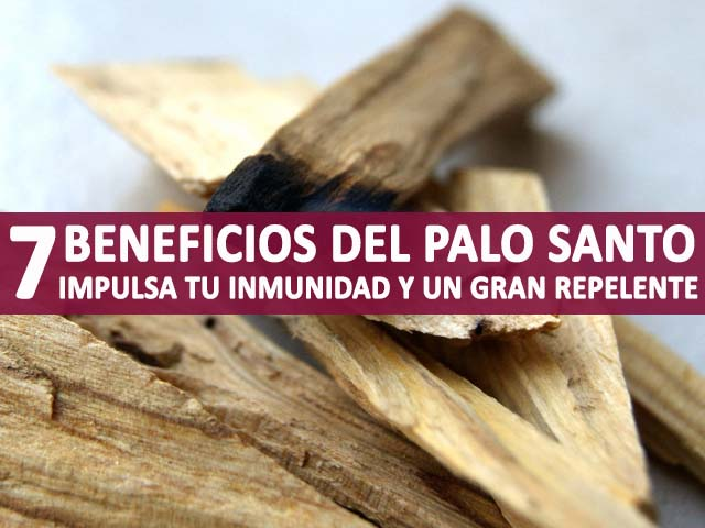 propiedades y beneficios del palo santo
