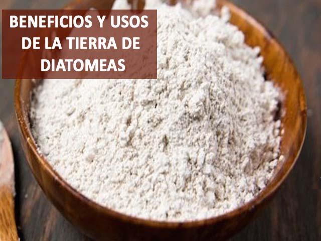 usos y beneficios de la tierra de diatomeas o diatomita