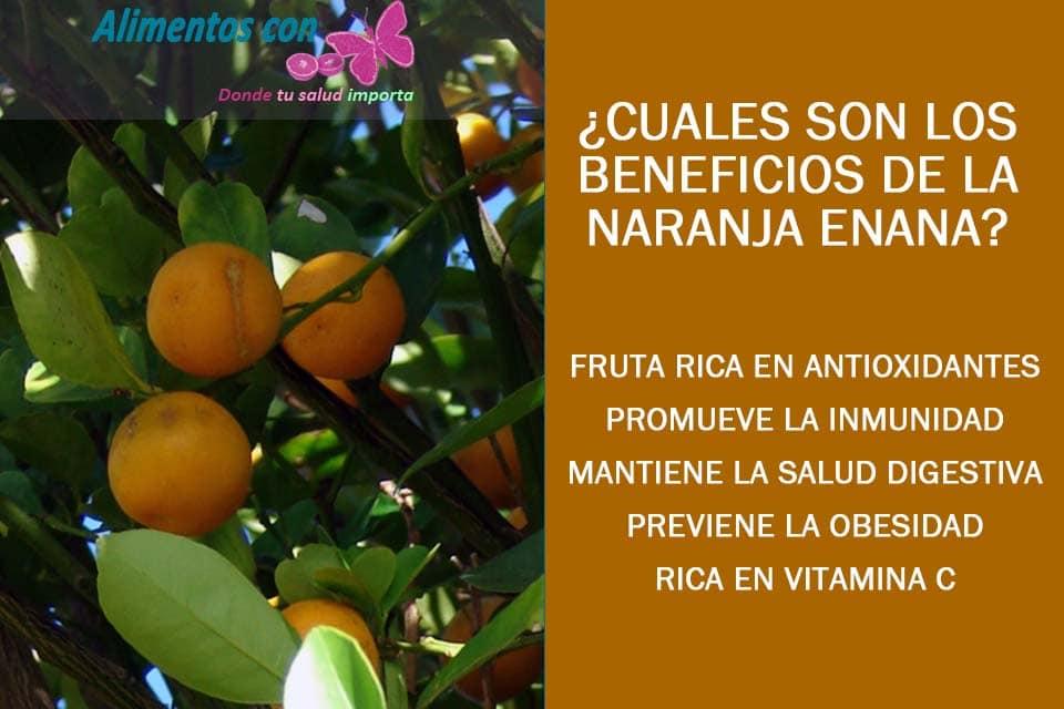 beneficios de la naranja enana o kumquat