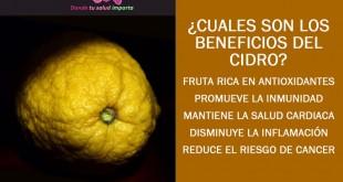 beneficios del cidro o citron