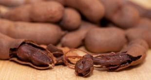 Tamarindo - Legumbre y fruta cuya pulpa tiene increíbles beneficios y propiedades