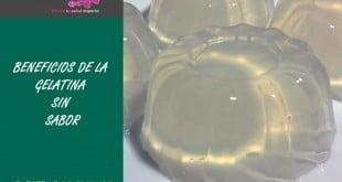 Gelatina sin sabor Beneficios y propiedades