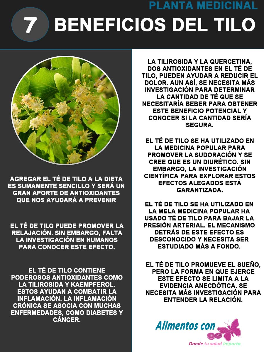 infografia sobre los beneficios del té de tilo