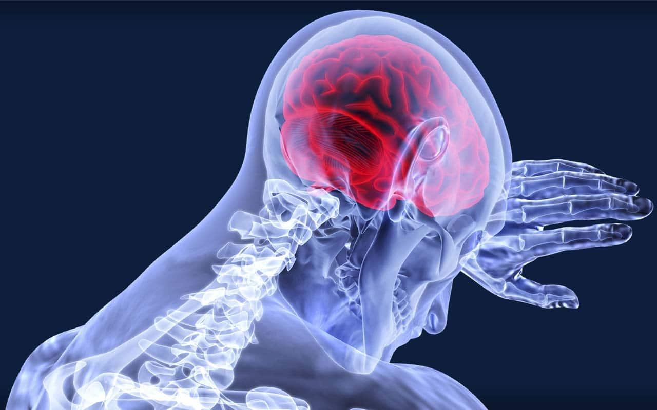 presión arterial y la salud cerebral